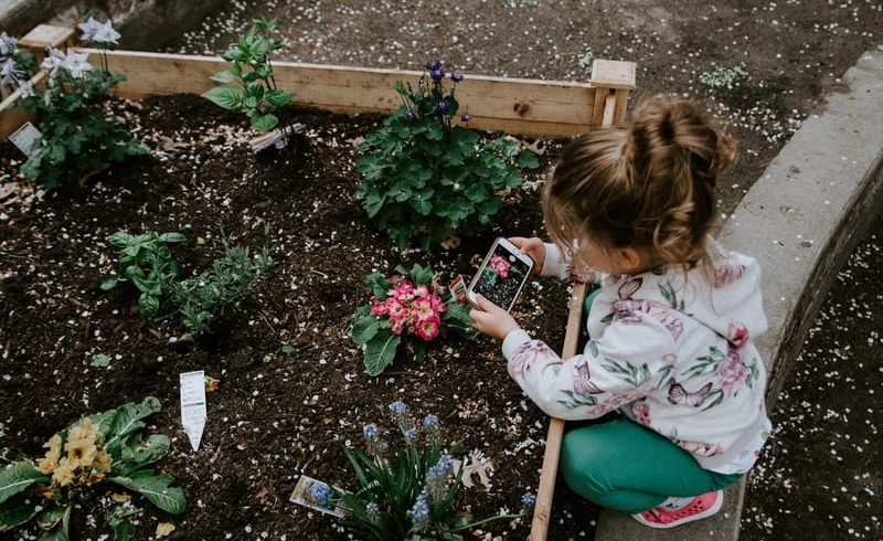 Boosting Your Mental Health With Plants